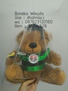 Boneka Wisuda Bogor